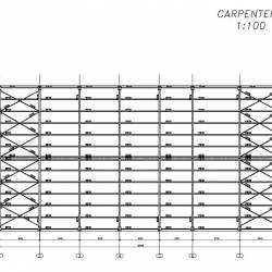 Carpenteria scala 1:100