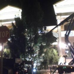 Installazione albero - 3